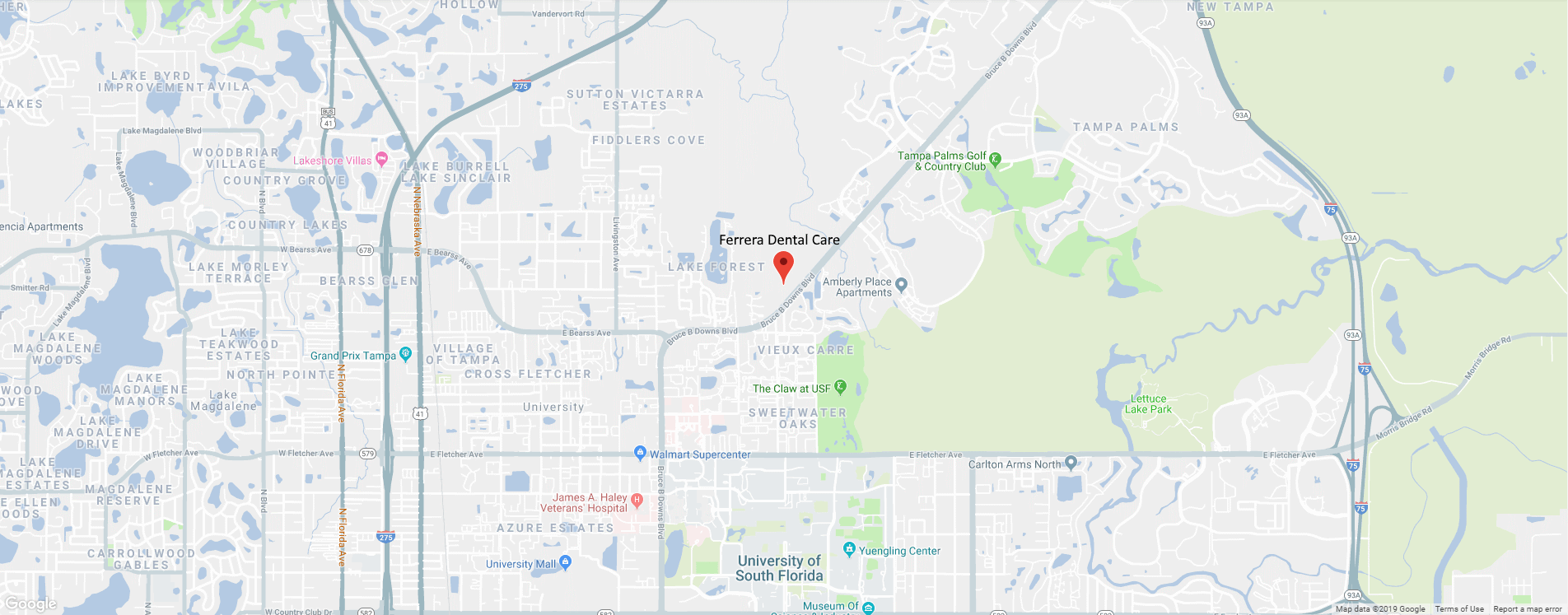 tampa google map